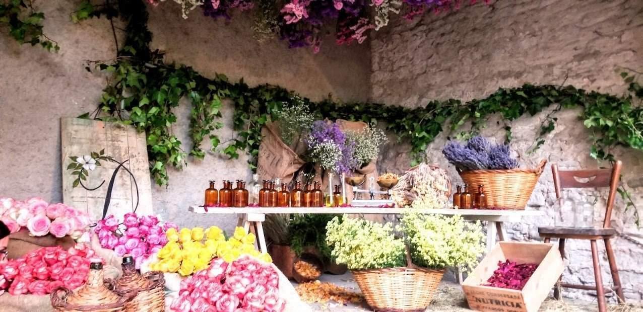 Girona, Spain Temps de Flors